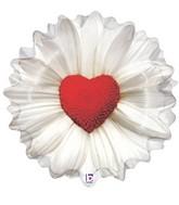 """24"""" Foil Shape Daisy Heart"""