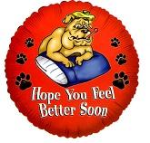 """18"""" Feel Better Soon"""