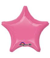 "18"" Rose Decorator Star"