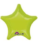 "18"" Kiwi Green Decorator Star"
