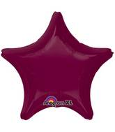 "18"" Berry Decorator Star"