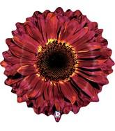 """24"""" Foil Shape Balloon Burgundy Flower"""