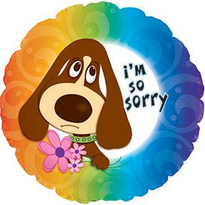 """17"""" Im So Sorry Balloon"""