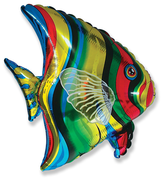 "25"" Tropical Fish"