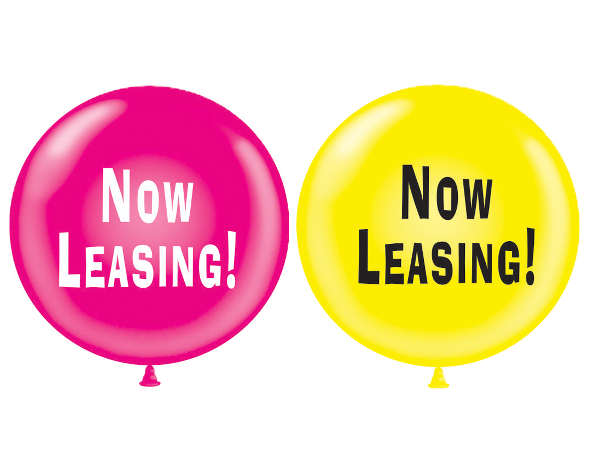 """36"""" Latex Balloon 2 Count Now Leasing (Magenta, Yellow)"""