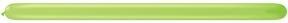 260Q Lime Green Twister Balloons 50 Count Q-PAK