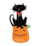 "41"" Cat on Pumpkin"