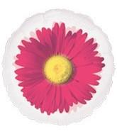 "18"" Pink Daisy MagiColor"