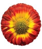 """18"""" Red Sunflower Mylar Balloon"""